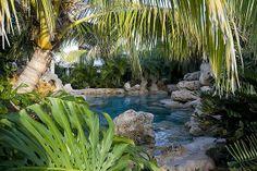 Florida Natural Landscape | landscaping-swimming-pool-tropical-plants-sarasota-bradenton-florida-1 ...