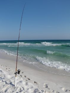 Looks like a beautiful day for some surf fishing, don't you think?