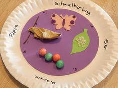 Schmetterlinge Lebenszyklus basteln mit kindern