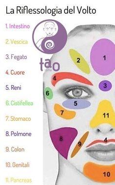 Il volto è uno specchio della condizione sia fisica che emotiva, ma vi si possono anche leggere i propri talenti e le proprie debolezze. Una mappa delle zone riflesse del volto In questa mappa si vede…
