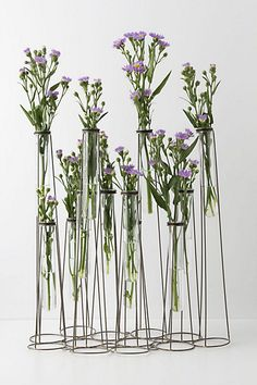 Test Tube Vase #anthropologie perfect for lots of little blooms