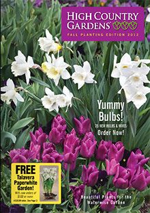 Xeriscape plants from the High Country Gardens catalog