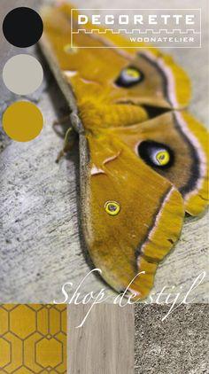 Shop de Stijl | Decorette Postma Wolvega | geel, grijs, behang, vlinder, pvc, karpet, hooked on walls