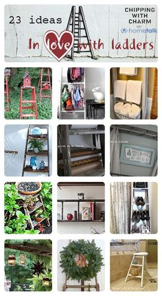Ladders on Hometalk curated by Chipping with Charm (featured on FunkyJunkInteriors.net)