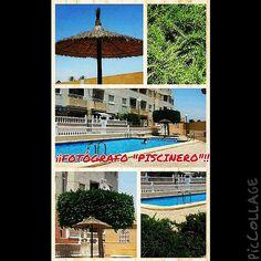 """¡¡Fotógrafo """"piscinero""""!! #ig #igers #igerstorrevieja #Torrevieja #Torrevieja2014 #Instagram #Instagramers #verano #verano2014 #alacant #alicante #costablanca #MarMediterráneo #collage"""