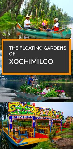 Xochimilco, meaning the 'Place of the Flowers' in Náhuatl, is famous for its waterways surrounding the ancient city of Tenochtitlan – which is now modern day Mexico City.