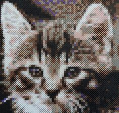 Hama Bead Cat Wall Art by TheFeltCastle on Etsy