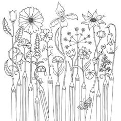 Happy Place - Johanna Basford Johanna Basford - Free coloring downloads Cool Coloring Pages, Christmas Coloring Pages, Adult Coloring Pages, Coloring Books, Zen Doodle Patterns, Doodle Designs, Floral Embroidery Patterns, Johanna Basford Coloring Book, Outline Drawings