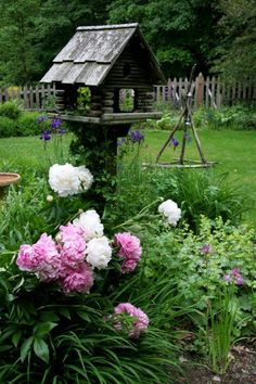 Bird house on a stand in the middle of a bed of peonies, Siberian irises, and lady's mantle. Love this.