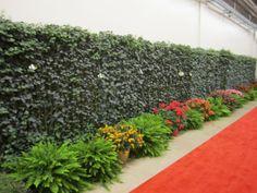 Mori Green Living Fences | Naturalne żywopłoty | Pinterest | Living Fence  And Living Walls