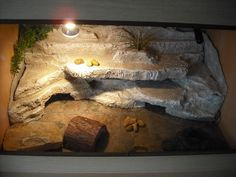 My fake rock background pics as promised.... - Reptile Forums