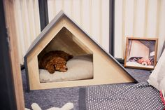 Contemporary Dog Houses - The Bad Marlon Dog Houses are Minimalistic and Modern…