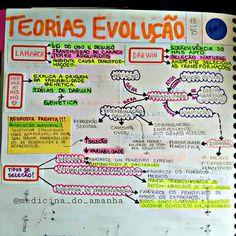 """#RESUMO #BIOLOGIA #EVOLUÇÃO <span class=""""emoji emoji2764""""></span><span class=""""emoji emoji2764""""></span><span class=""""emoji emoji2764""""></span> Também já está disponível para download no blog (RESUMOS 2016 ..."""