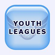 Top Flight Volleyball - Youth Leauges Information
