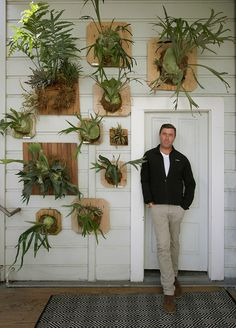 Staghorn fern garden, Flora Grubb Gardens | Remodelista Architect / Designer Directory
