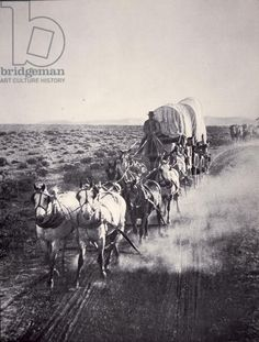 Eight horse heavy freight wagon (b/w photo) 19thC Elijah Dow Hutchinson 1830 Jarius Bonney 1846