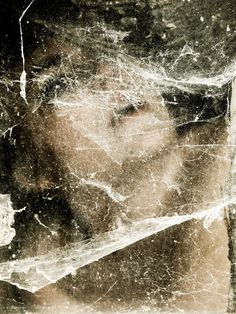 The Public House of Art presents: photography art from Henri Senders, Rosa, 1.29 p.m.: Buy limited edition art online, starting at 100€. Art to disrupt, not to bankrupt!