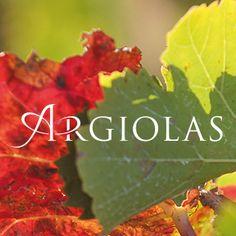 Softfobia ha realizzato il nuovo sito delle Cantine Argiolas e sviluppato la strategia social
