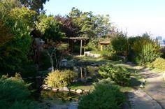 Jardin Japones en Cerro San Cristobal.