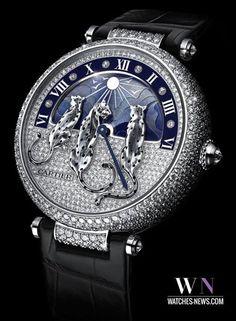 La montre noir et gris avec diamants très élégant. Il est très chouette et à la mode. ll est trop cher, ll coute milles de Euros. Mais il est super!