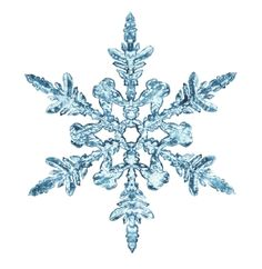 snowflakes | Are no two snowflakes alike? | How It Works Magazine