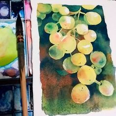 Watercolor grapes study based on a painting by David Lonbenberg  love his paintings! There are pictures of the process on my stories and on my personal instagram @keiwawaw . Saunders cold pressed paper Cotman watercolors #study #painting #davidlonbenberg #grapes #watercolor #fruits #drawing #saunders #winsorandnewton