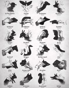 How to make shadow animals with your hands. - Humor Photo - Humor images - How to make shadow animals with your hands. The post How to make shadow animals with your hands. appeared first on Gag Dad. Shadow Art, Shadow Play, Shadow Images, Antique Nursery, Vintage Nursery, Vintage Decor, Shadow Puppets With Hands, Hand Shadows, Play Poster
