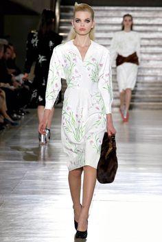 Miu Miu Fall 2011 Ready-to-Wear Fashion Show - Daphne Groeneveld (Women)