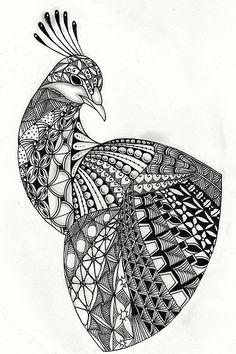 Ben Kwok Peacock Template | Flickr - Photo Sharing!