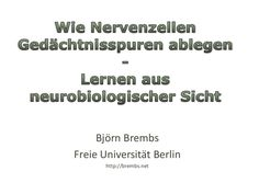 Lernen aus Neurobiologischer Sicht   https://personal-trainer-muenchen.bayern/
