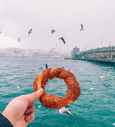 Tag who you'd feed the birds with Did you know about simit? Simit gevrek or koulouri is a circular bread typically encrusted with sesame seeds or less commonly poppy flax or sunflower seeds found across the cuisines of the former Ottoman Empire and the Middle East. #VacationWolf http://www.VacationWolf.com Check us out at @cuisinewolf :@cuisinewolf