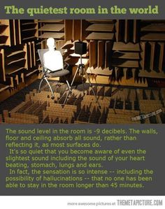 Quietest room in the world..