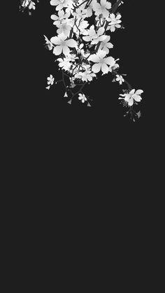 fond d& noir et blanc avec fleurs de cerisier - Black Phone Wallpaper, Dark Wallpaper, Tumblr Wallpaper, Flower Wallpaper, Lock Screen Wallpaper, Mobile Wallpaper, Wallpaper Backgrounds, Iphone Wallpaper, Japanese Wallpaper Iphone