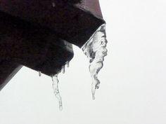 Jemina Staalon Veden vuosi 2: Nyrpeä jääpuikko