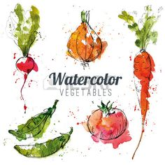 Set of watercolor vegetables Stock Vector
