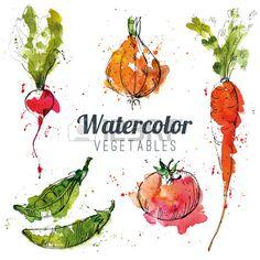 Set of watercolor vegetables Stock Vector