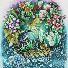 Take a peek at this great artwork on Johanna Basford's Colouring Gallery! Johanna Basford Books, Johanna Basford Coloring Book, Colouring Pages, Coloring Books, Magical Jungle Johanna Basford, Secret Garden Coloring Book, Polychromos, Colouring Techniques, Coloured Pencils