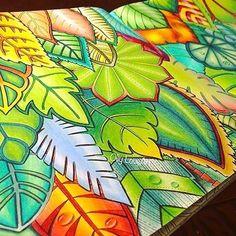 Amazing By @ollyloveart --------------------------------- Quer ter o seu desenho postado no nosso ig? Marque a tag #selvamagicaoficial --------------------------------- #oceanoperdido #jardimsecreto #selvamagica #selvamagicaoficial #florestaencantada #lostocean #secretgarden #enchantedforest #magicaljungle #colorindo #coloring #johannabasford #editorasextante