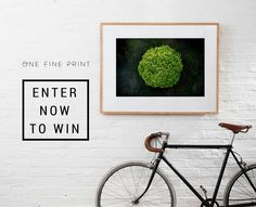I just entered to win a framed print from One Fine Print valued at $1,950! You should too, it's easy!