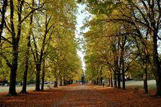 Parco Talon, autumn