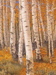 Giclee Print: Autumn Eyes by Graeme Stevenson : Landscape Art, Landscape Paintings, Landscapes, Forest Landscape, Birch Tree Art, Birch Branches, Aspen Trees, Autumn Scenery, Beginner Painting