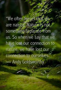 "Nature Quotes Brilliant ☆ ""i Go To Nature To Be Soothed And Healed And To Have My Senses"