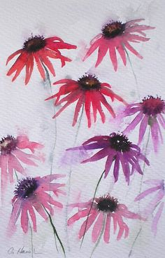 £80 ~ ECHINACEA 4 watercolour painting original art by TheMinervaGallery