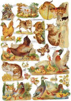 Victorian Scrap - Cats and Farm Animals via Etsy