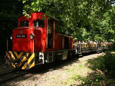 7 hangulatos kisvasút az országban, ahová menjetek el a gyermekeddel Hungary, Train, Photos, Kids, Children, Pictures, Boys, Babies, Trains