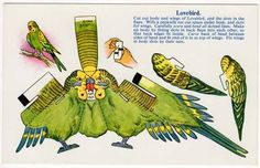 Cut Out Paper Doll  Postcard of A Lovebird