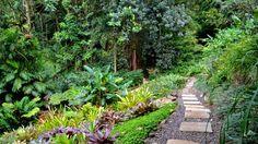 Lyon Arboretum - Trails of Freedom