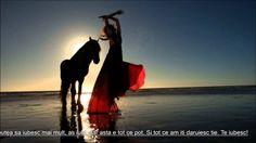 Melodie Araba de Dragoste Superba   2014
