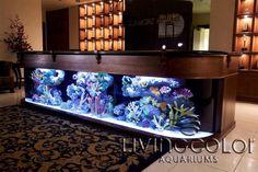 Custom Aquarium Bar