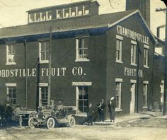 Crawfordsville Indiana, Small Towns, Plant, Fruit, Plants, Replant, Trees